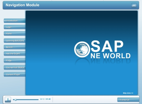 SAP Online Demo